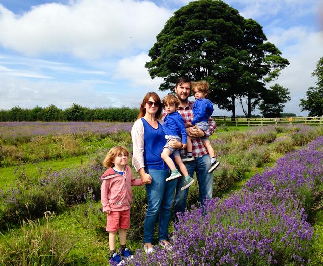 Lavender Inglenook Farm (2 of 2)